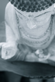 Buddha;s hand and head