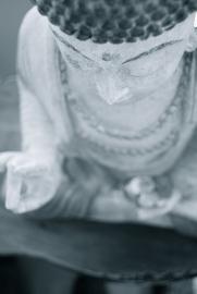 Buddha;s hand and head
